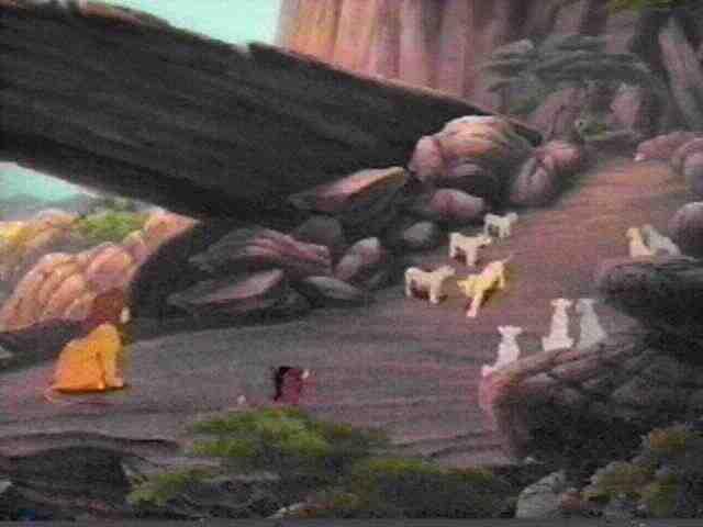 Saka's Lion King Malazi :: Media :: Image Archive :: The ...