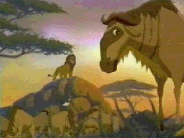 Saka S Lion King Malazi Media Image Archive The